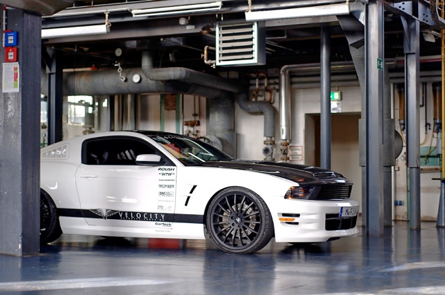 mustang_fastback_09