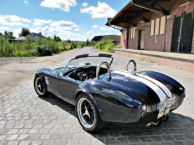 am102010_6085_ac_cobra_00