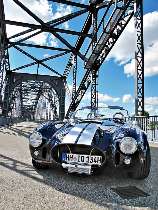 am102010_6085_ac_cobra_04