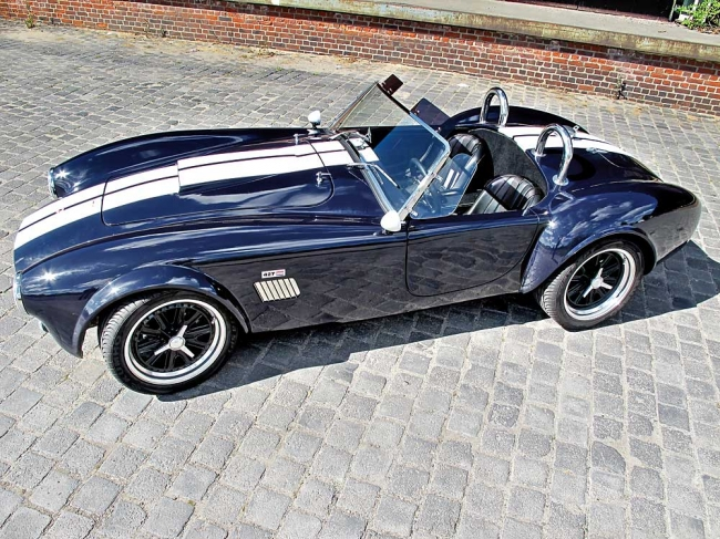 am102010_6085_ac_cobra_07