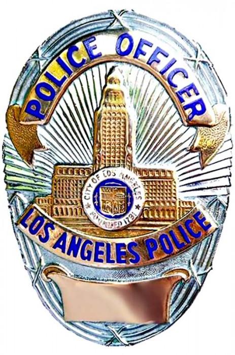 Die Marke: Wer einem so ein Blechschild vor die Nase hält, ist – meistens - ein echter Cop. Und fährt - meistens - einen echten Polizeiwagen, der voll ist mit Technik