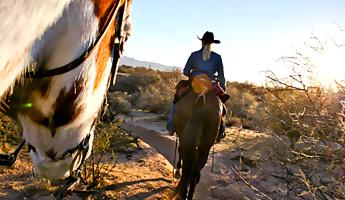 Mit 1 PS durch Arizona – Auf dem Rossrücken in die Wüste